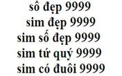 """""""Sim lục quý"""" 0969 999 999 có giá bao nhiêu?"""