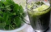 Suýt chết vì cốc nước rau má ngày Tết