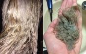 Nếu có ý định tẩy tóc, nên biết điều này