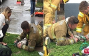 Hành động kỳ lạ của người lính cứu hỏa với chú chó hấp hối trong đám cháy khiến người xem bật khóc