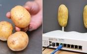 """Cả nhà bạn gái """"sốc"""" khi anh chàng sang chơi cầm theo hai củ khoai tây và cắm lên cục wifi"""