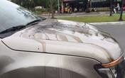 Chủ ô tô tá hỏa vì bị kẻ xấu đổ dầu luyn và keo lên xe