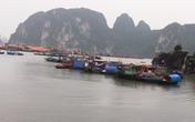 Bão số 2: Quảng Ninh họp khẩn cấm tàu thuyền ra khơi