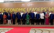 Chủ tịch nước chủ trì tiệc chiêu đãi lãnh đạo APEC