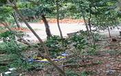 Vì sao khó xử lý đối tượng phá tường rào nhà hàng xóm tại Phú Quốc?