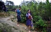 Yên bái: Sau lũ, nhiều hộ dân không muốn về nơi ở cũ