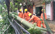 Tổng công ty Điện lực miền Bắc khắc phục hậu quả bão số 2
