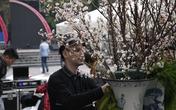 Hà Nội gấp rút chuẩn bị triển lãm Hoa anh đào Nhật Bản 2017