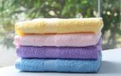 Mollis - bước đột phá trong thị trường khăn bông