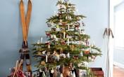 17 cách trang trí cây thông Noel dễ thực hiện dành riêng cho nhà nhỏ