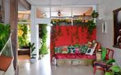 """Cô gái độc thân biến căn hộ nhỏ của mình thành """"vườn cây trong phố"""""""