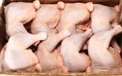 Thịt gà 2.000 đồng/kg đổ về: Truy tìm kẻ nhập khẩu bỏ trốn