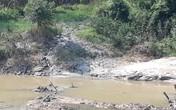 """Huyện Triệu Sơn, Thanh Hóa: Nhiều cơ sở giặt, tái chế bao bì """"đầu độc"""" sông Nhơm"""