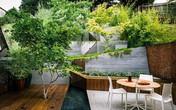 Khu vườn có góc thư giãn đẹp đến mức ai cũng muốn ngồi cả ngày
