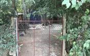 Bi kịch phía sau vụ chủ trang trại đâm chết tên trộm gà trong đêm