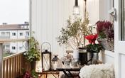 Trang trí góc thư giãn trong nhà đẹp ngất ngây bằng hoa