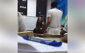 """Giáo viên tiếng Anh chửi học viên là """"con lợn"""": Trung tâm bất ngờ lên tiếng"""