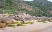Những điểm đến hấp dẫn khi du lịch Phú Yên không nên bỏ qua