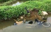 Hải Dương: Đi thăm đồng, trưởng thôn phát hiện nam thanh niên tử vong dưới mương