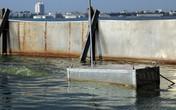 Xem xét nhân rộng xử lý ô nhiễm bằng công nghệ Nano – Bioreactor Nhật Bản