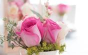 Dắt túi 15 cách cắm hoa tuyệt đẹp vào mùa xuân cực kì tiết kiệm