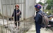 Dịch tả lợn châu Phi: Người chăn nuôi lợn Thanh Hóa đang kiệt sức