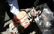 Tìm thấy hộp đen máy bay rơi khiến 157 người chết