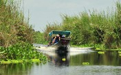 Khám phá vẻ đẹp hoang sơ của Vườn Quốc gia U Minh Thượng