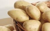 Khoai tây giúp giảm đường huyết, có lợi cho người bệnh tiểu đường