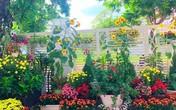 Hoa xuân đua nở trong khu vườn của diễn viên Quyền Linh