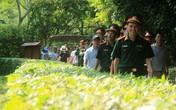 Nghệ An: Hàng ngàn du khách về thăm quê Bác