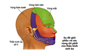Bác sĩ hướng dẫn xử trí khi bị đau giật mặt