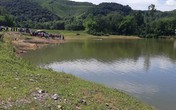 3 học sinh đuối nước ở Nghệ An: Tìm thấy thi thể thứ 2
