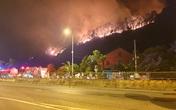 Đốt thực bì gây cháy 4900 m2 rừng, lão nông ở Hà Tĩnh bị phạt 90 triệu đồng