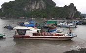 Tàu cao tốc va chạm với tàu cá, nhiều du khách bị thương