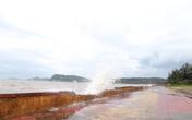 Hải Phòng: Nhiều hoạt động phải dừng, hủy vì bão số 2