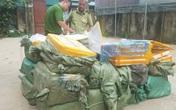 Hà Nội: Phát hiện 1.350 kg nầm lợn không rõ nguồn gốc đang tập kết chuẩn bị đưa vào quán nhậu
