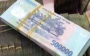 Truy tố nữ giám đốc lừa 8,4 tỷ đồng