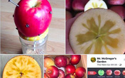 Cắm 12 cây đinh vào quả táo rồi ăn để bổ sung sắt: Chuyên gia lý giải về ý tưởng 'điên rồ'