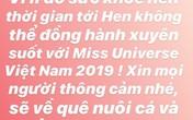 H'Hen Niê đột ngột tuyên bố dừng đồng hành với Hoa hậu Hoàn vũ Việt Nam 2019