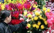 Hoa lụa đẹp hơn hoa thật, khách xuýt xoa mua về chơi Tết