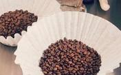Những công dụng của giấy lọc cà phê trong đời sống hằng ngày sẽ khiến bạn cực bất ngờ
