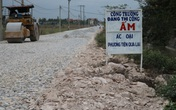 Hơn nghìn gốc đào ở Kiến Thụy, Hải Phòng bị bụi phủ trắng được chi trả hỗ trợ