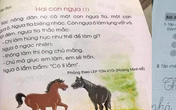 Những từ ngữ, bài học nào trong sách Tiếng Việt lớp 1 bộ sách Cánh Diều sẽ phải điều chỉnh và thay thế?