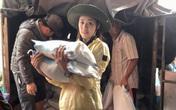 Hoa hậu hoàn vũ Việt Nam chung tay hỗ trợ cộng đồng, khắc phục thiên tai bão lũ