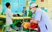Sạt lở kinh hoàng ở Quảng Nam: Huy động chó nghiệp vụ tìm kiếm 13 người mất tích còn lại