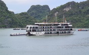 Hải Phòng công bố các cụm, điểm neo đậu cho tàu lưu trú, nghỉ đêm trên vịnh Cát Bà