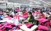 TTDVVL Ninh Bình: Trăn trở tìm hướng đi cho người lao động thất nghiệp