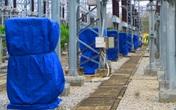 Truyền tải điện Quảng Ngãi khắc phục nhanh các sự cố, thiệt hại do bão số 9 và chuẩn bị phòng chống bão số 10