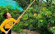 Nhìn cách Vy Oanh tạo dáng bên khu vườn trong biệt thự khiến nhiều người thích mê